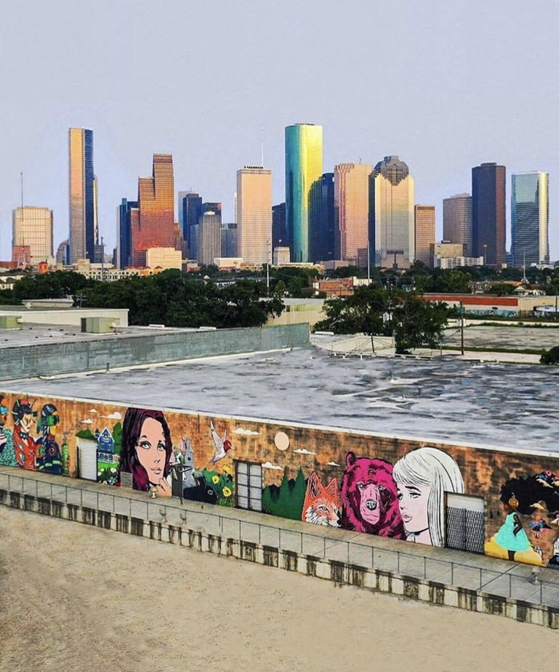 Houston wall artwork pops up